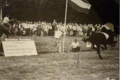 Paardenrennen-1990