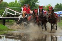 Paardendagen Driezum Walterswald Vierspan hindernis