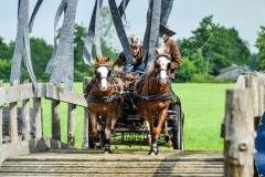 Paardendagen Driezum Walterswald 2016