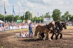Boerendag Paardendagen 2016-25