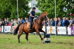 16-barrelrace_paarden-1