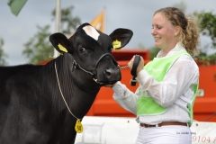 Paardendagen Walterswald Veekeuring Friesland (3)