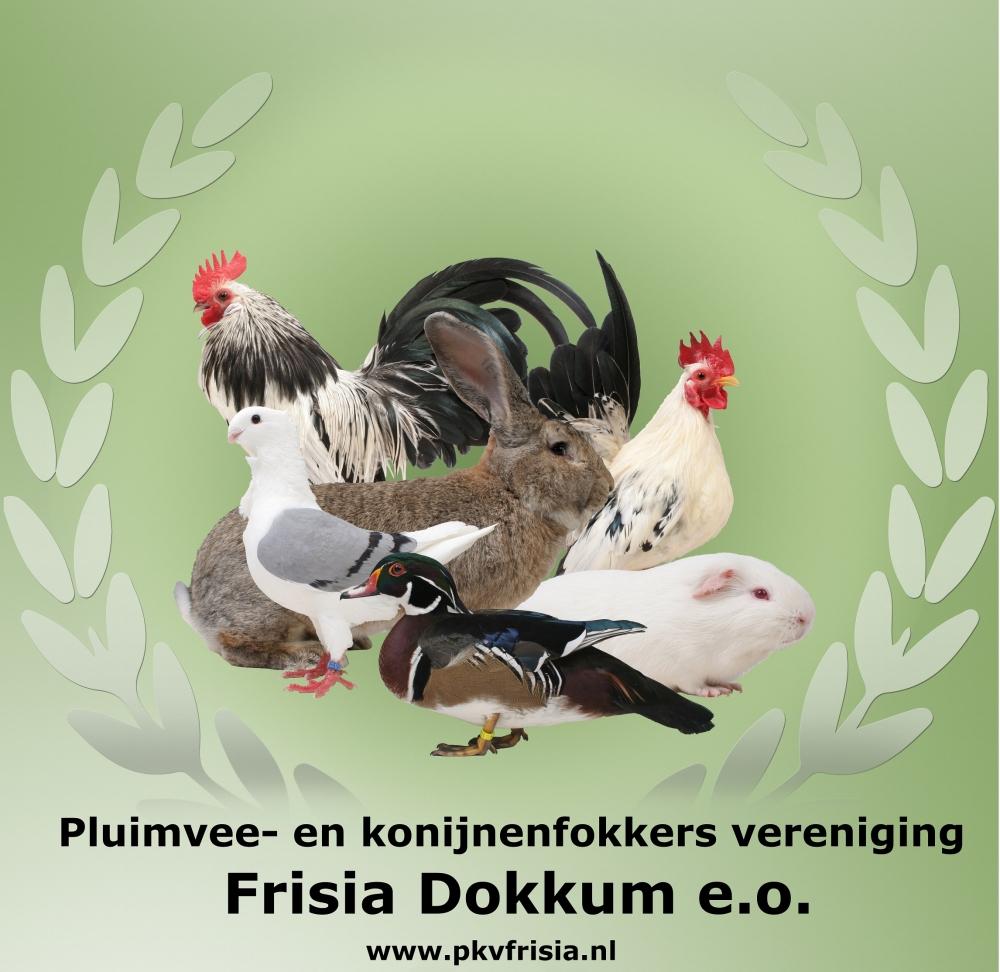 Paardendagen Walterswald PKV Frisia Dokkum