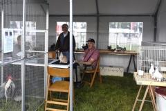 Paardendagen Walterswald PLV Frisia (2)