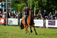 barrelrace_paarden-23