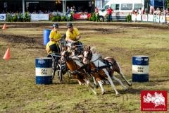 Paardendagen Boerendag 2016 Nick