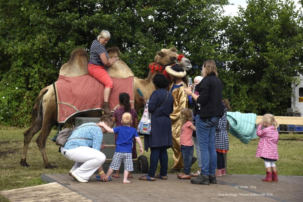 Paardendagen Walterswald Boerendag Boerenmarkt (39)