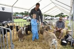 Paardendagen Walterswald Boerendag geitenkeuring (3)