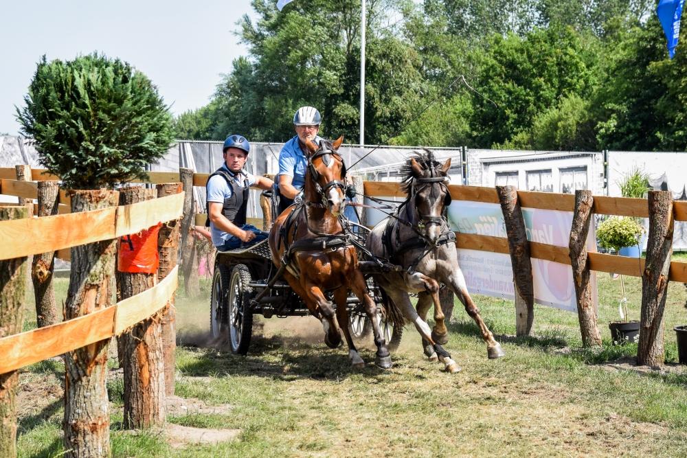2019-paardenmarathon-paardendagen-driezum-walterswald-6