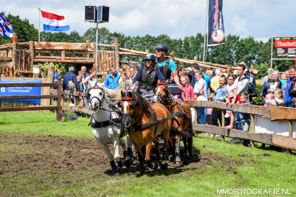 Paardendagen Driezum Walterswald 2017