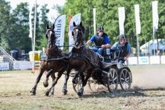 2019 paardendagen marathon walterswald (2)