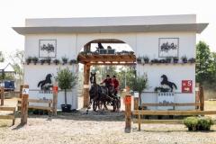 2019 paardendagen marathon walterswald (4)
