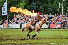 Paardendagen Paardenkrachtenshow Walterswald (11)