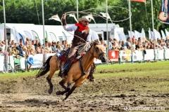 Paardendagen Paardenkrachtenshow Walterswald (8)