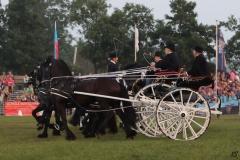 STUURKUNST Paardendagen Walterswald