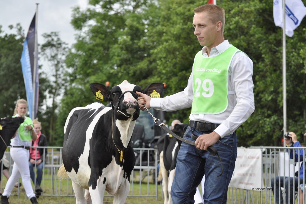 Paardendagen Walterswald Veekeuring Friesland (41)