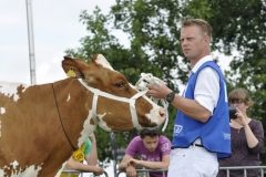 Paardendagen Walterswald Veekeuring Friesland (11)