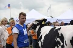 Paardendagen Walterswald Veekeuring Friesland (12)