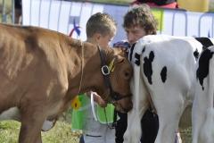 Paardendagen Walterswald Veekeuring Friesland (36)