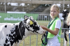 Paardendagen Walterswald Veekeuring Friesland (39)