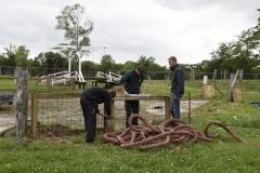 Paardendagen Driezum Walterswald hindernis vrijwilligers (2)